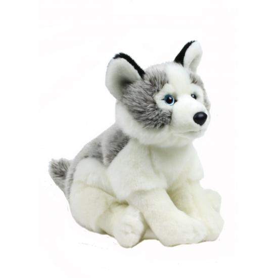 Knuffel Husky hond 38 cm