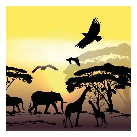 Afbeelding van Servetten safari/jungle thema print 3-laags 20 stuks
