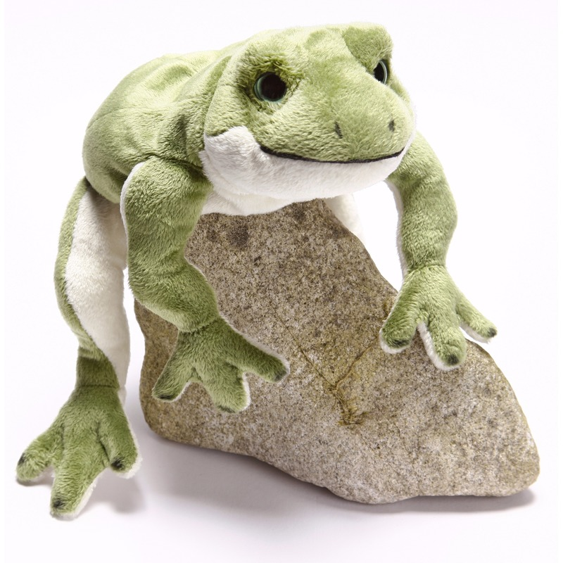 Afbeelding van Speelgoed knuffel groen kikkertje 30 cm